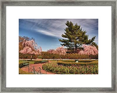 Luminous Colors Of Spring Framed Print
