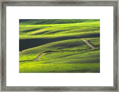 Luminous Green  Framed Print by Joan Herwig