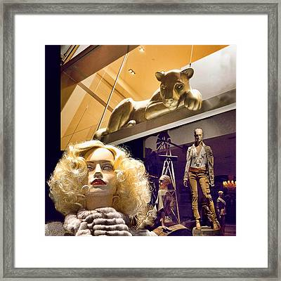 Luna Goes Shopping Framed Print by Chuck Staley