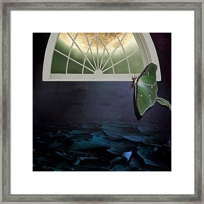 Luna Framed Print by Sandra Pearsall