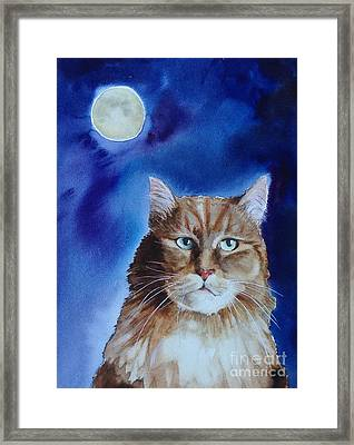 Lunar Cat Framed Print by Kym Stine