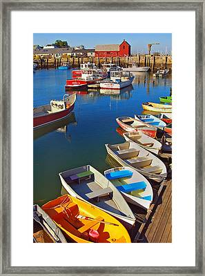 Lunch At The Harbor Framed Print by Joann Vitali