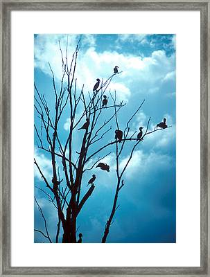 Lunch Crowd Framed Print