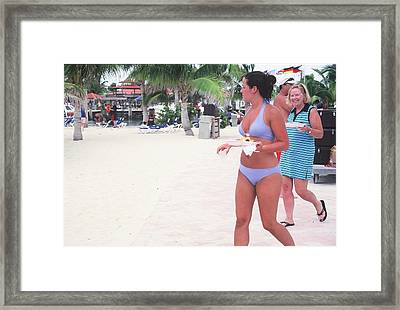 Lunch Framed Print by Dick Willis