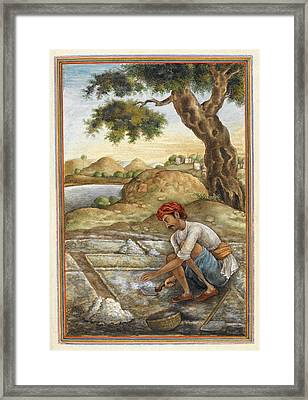Lunia Salt-digger Framed Print by British Library
