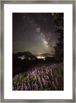 Lupine Blanket Under The Stars Framed Print by Mike Berenson