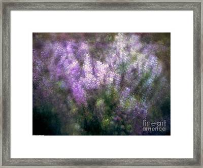 Lupine By The River  Framed Print by Kevin Felts