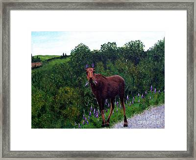 Framed Print featuring the painting Lupine Loving Moose by Barbara Griffin
