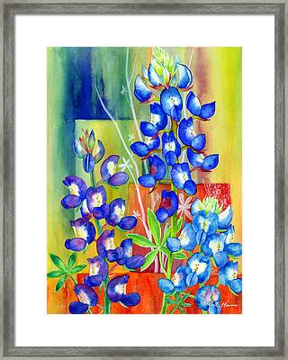 Lupinus Texensis Framed Print by Hailey E Herrera