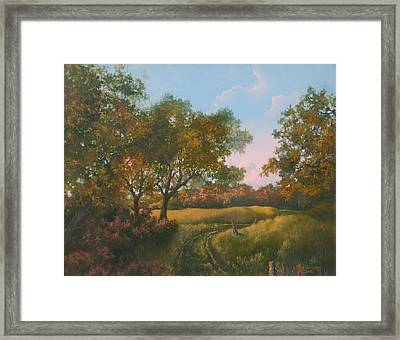 Luray Pasture Framed Print