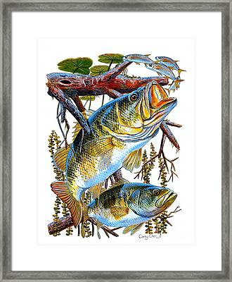 Lurking Bass Framed Print by Carey Chen