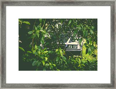 Lurking I Framed Print