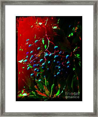 Luscious Berries Framed Print by Gerlinde Keating - Galleria GK Keating Associates Inc