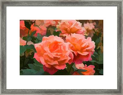 Luscious Fragrant Roses - Impressions Of June Framed Print