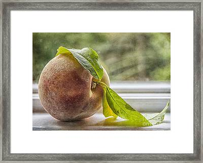 Luscious Peach Framed Print