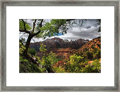 Luscious View Framed Print