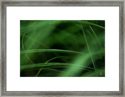 Lush Escapes Framed Print