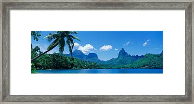 Lush Foliage And Rock Formations Framed Print by Panoramic Images