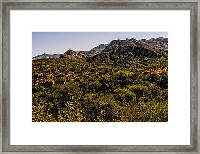 Lush Foothills No.1 Framed Print