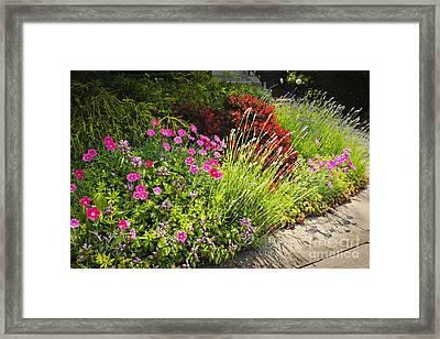 Lush Garden Framed Print by Elena Elisseeva