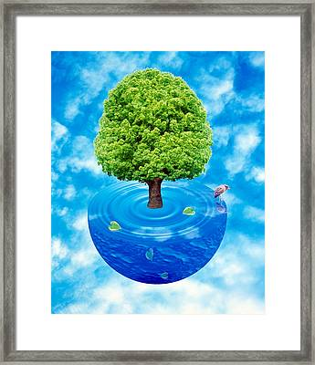 Lush Green Tree Growing From Half Framed Print by Panoramic Images