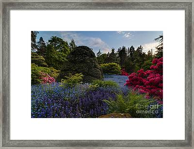 Lush Kubota Spring Landscape Framed Print