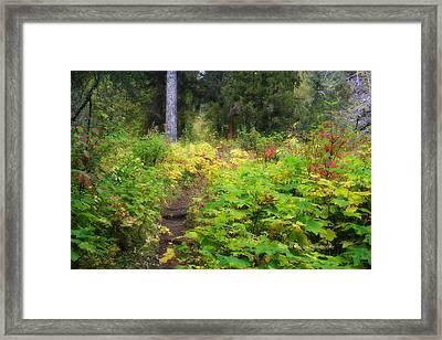 Lush Framed Print by Michele Richter