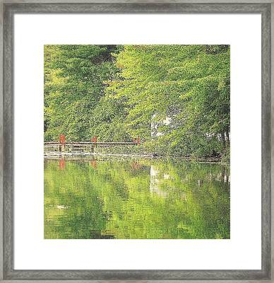 Lush Summer Catching A Moment In Time Framed Print by Rosemarie E Seppala