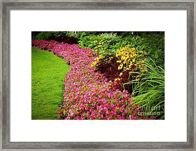 Lush Summer Garden Framed Print by Elena Elisseeva