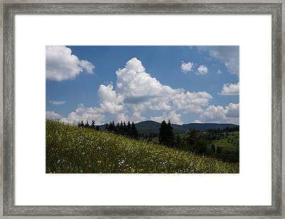 Lush Wildflower Meadow In The Mountains Framed Print by Georgia Mizuleva