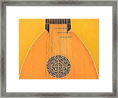 Lute Framed Print by John Illingworth