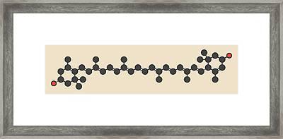 Lutein Carotenoid Molecule Framed Print