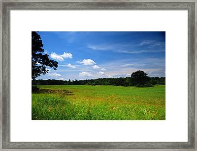 Lwv40057 Framed Print