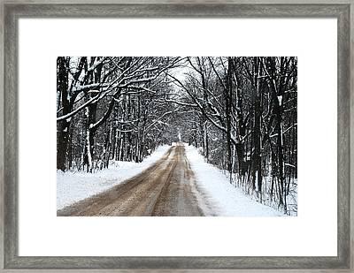 Lwv50005 Framed Print by Lee Wolf Winter