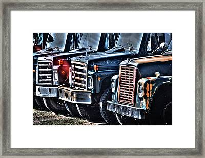 Lwv50020 Framed Print
