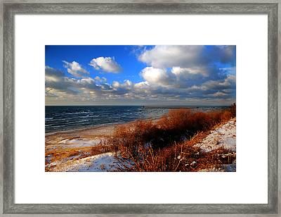 Lwv50027 Framed Print by Lee Wolf Winter