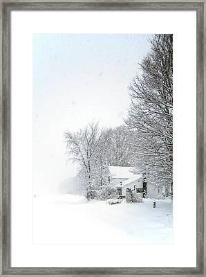 Lwv50031 Framed Print