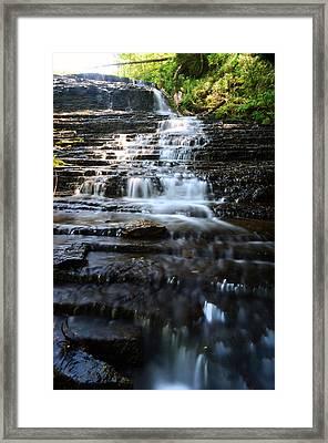 Lwv60001 Framed Print