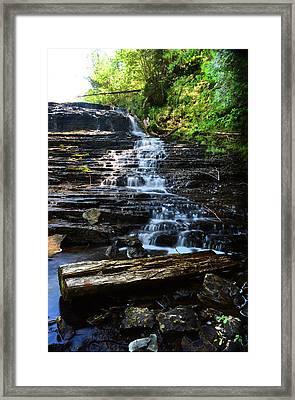 Lwv60004 Framed Print