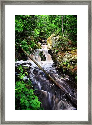 Lwv60008 Framed Print by Lee Wolf Winter