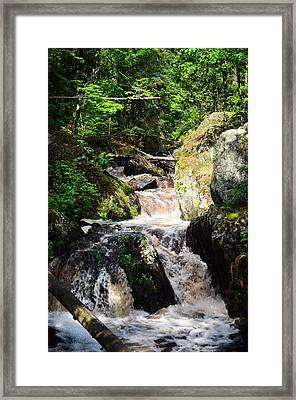 Lwv60009 Framed Print