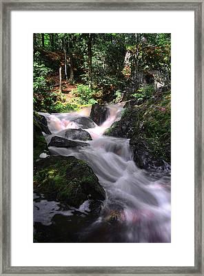 Lwv60010 Framed Print by Lee Wolf Winter