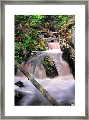 Lwv60011 Framed Print