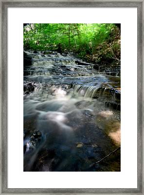 Lwv60012 Framed Print