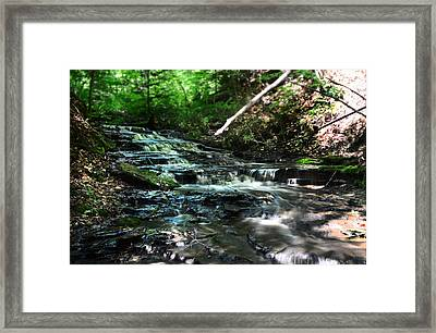 Lwv60013 Framed Print
