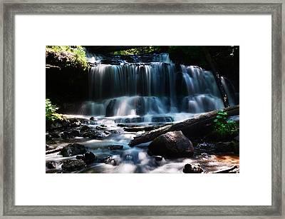 Lwv60015 Framed Print