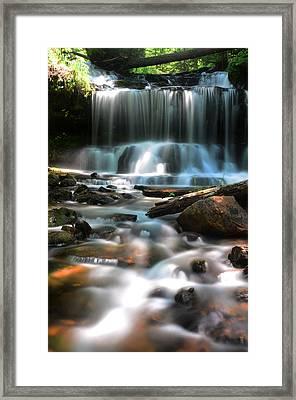 Lwv60016 Framed Print