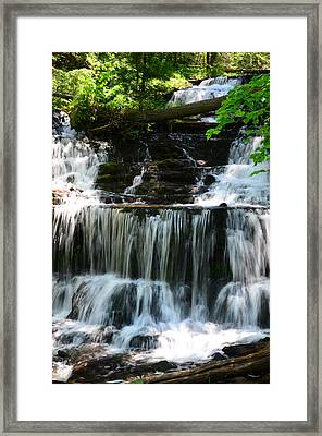 Lwv60017 Framed Print by Lee Wolf Winter