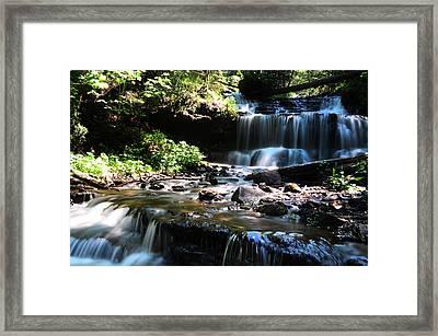 Lwv60018 Framed Print