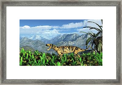 Lycaenops Carnivore Framed Print by Walter Myers
